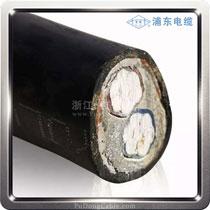 0.6/1kv两芯电力电缆VLV